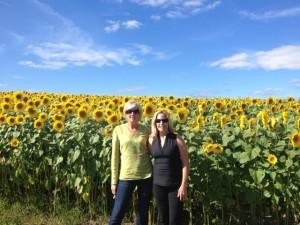 sunflower blog photo